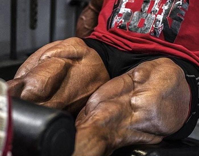 Руководство для начинающих по наращиванию огромных мышц